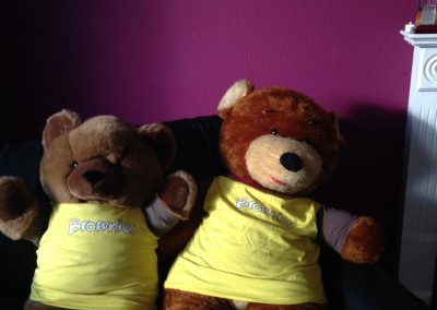 Brownie Teddies